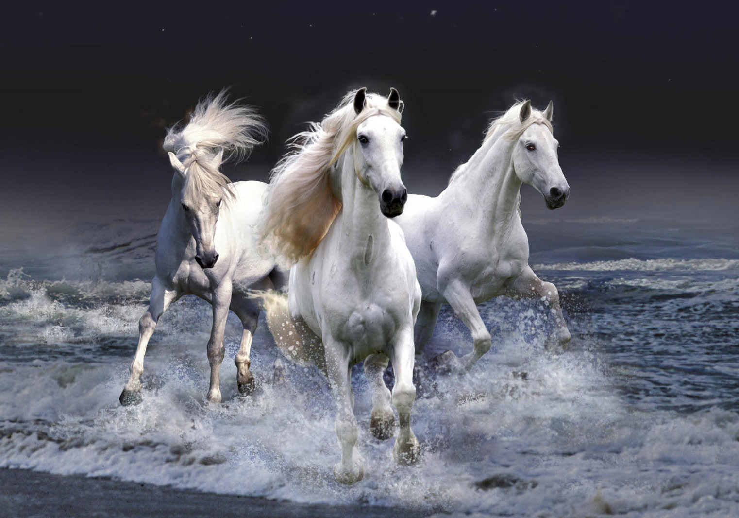 http://www.coreldesign.com/blog/wp-content/uploads/2012/01/wallpaper_Horse.jpg